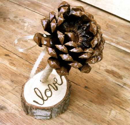 Rustic Pine cone pen for a guestbook table