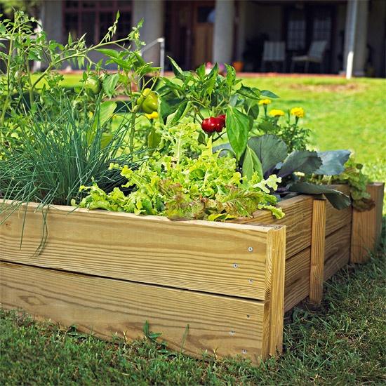 Money saving gardening ideas - Money saving tips in gardening ...
