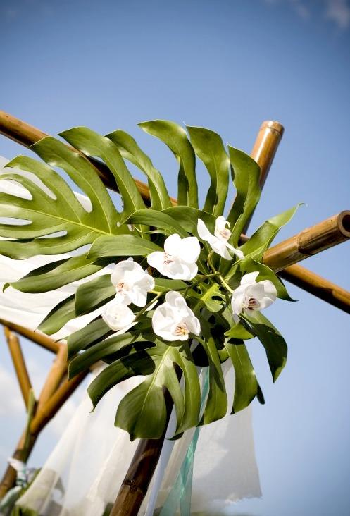 tropical wedding ceremony ideas