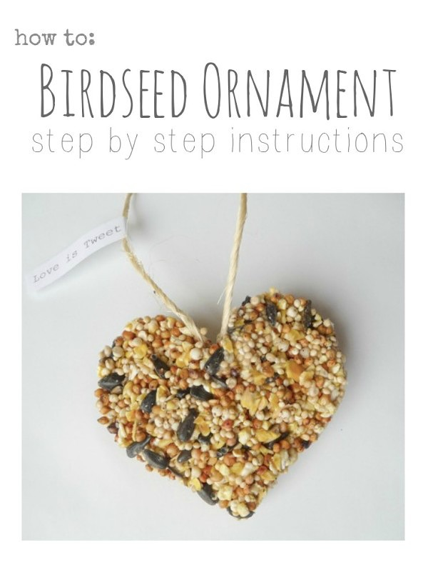 How to make a birdseed ornament